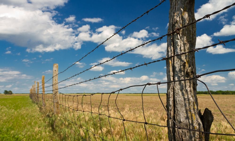 The Importance of Fence Staples
